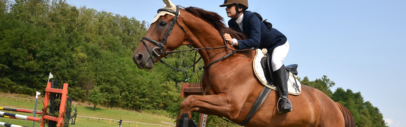 slide_equitazione